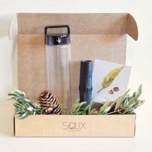 Pack agua sin plástico de Salix