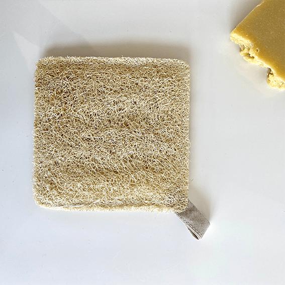 Esponja vegetal cuadrada Lufa de Iberluffa